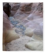Dry Creek Bed 3 Fleece Blanket