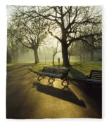 Dublin - Parks, St. Stephens Green Fleece Blanket