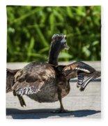 Duck And Run Fleece Blanket