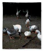 Duck Duck Goose Fleece Blanket