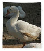 Duck Enjoying The Sun In The Winter In Delhi Zoo Fleece Blanket