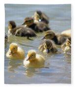 Ducklings 09 Fleece Blanket