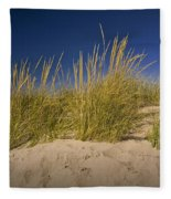 Dune And Beach Grass On Lake Michigan No.969 Fleece Blanket