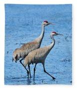 Dynamic Duo Fleece Blanket