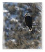 Eagle In Tree 2 Fleece Blanket