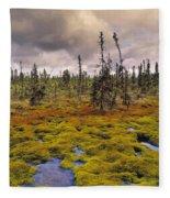 Eagle Plains, Yukon Territory, Canada Fleece Blanket
