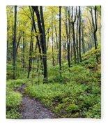 Early Autumn Hike Fleece Blanket