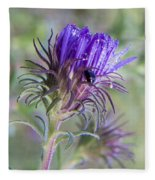 Early Knapweed Fleece Blanket