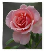 Early Morning Rose Fleece Blanket