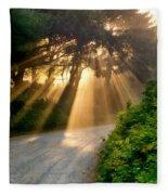 Early Morning Sunlight Fleece Blanket