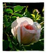 Early Rose Fleece Blanket