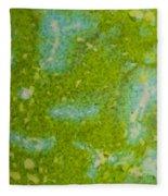 Easter Egg Green Macro 1 Fleece Blanket