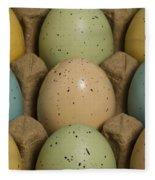 Easter Eggs Carton 1 A Fleece Blanket
