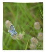 Eastern Tailed Blue Butterfly Fleece Blanket