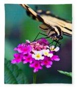 Eastern Tiger Swallowtail 8 Fleece Blanket