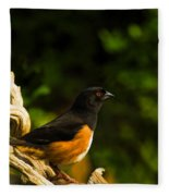 Eastern Towhee Fleece Blanket