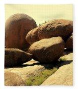 Elaphant Rocks 4 Fleece Blanket