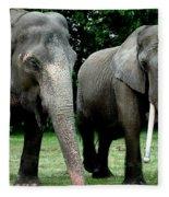 Elephant Meeting Fleece Blanket