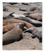 Elephant Seal Colony On Big Sur  Fleece Blanket