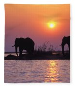 Elephant Silhouettes Fleece Blanket