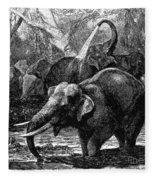 Elephants Fleece Blanket