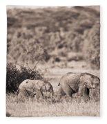 Elephants Walking In A Row Samburu Kenya Fleece Blanket