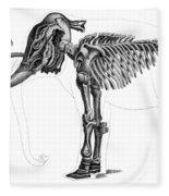 Elephas, Extant Cenozoic Mammal Fleece Blanket