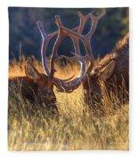 Elk 2 Elk Fleece Blanket