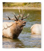 Elk Bugle Estes Lake Colorado Fleece Blanket