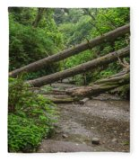 Entrance To Fern Canyon Fleece Blanket