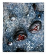 Eroded Rock With Dried Leaves Fleece Blanket