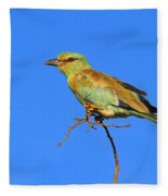 Eurasian Roller Fleece Blanket