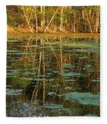 Evening Light On Missouri Pond 2 Fleece Blanket