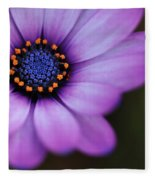 Eye Of The Daisy Fleece Blanket
