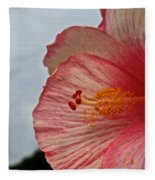 Facing Forward Fleece Blanket