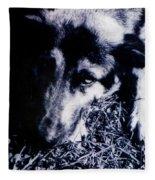 Faithful Friend Fleece Blanket
