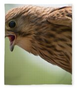 Falcon Fleece Blanket