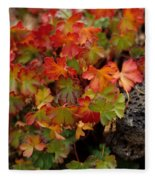 Fall Brilliance Fleece Blanket