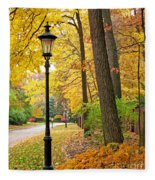 Fall Color And Lamppost Fleece Blanket