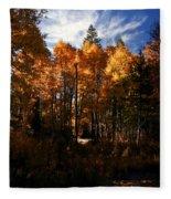 Fall Colors Taylor Creek. Fleece Blanket