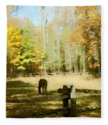 Fall Corral Fleece Blanket
