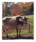 Fall Cow Fleece Blanket
