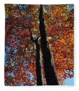 Fall From Above Fleece Blanket