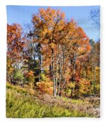 Fall In The Foothills Fleece Blanket