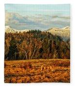 Fall Landscape-hdr Fleece Blanket