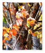 Fall Leaves 2 Fleece Blanket