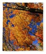 Fall Maple Treetops Fleece Blanket