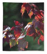 Fall Red Fleece Blanket