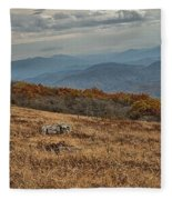 Fall Scene On Whitetop Mountain Va Fleece Blanket