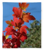 Fall Snowball Branch Fleece Blanket